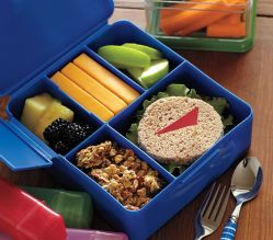 potter barn bento box container